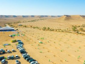 Tree Plantation Drive To Increase SAUDIA's Green Cover - Green Campaign